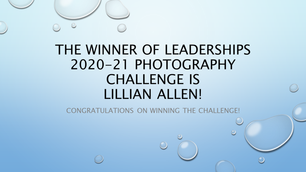 Photography Challenge Winner